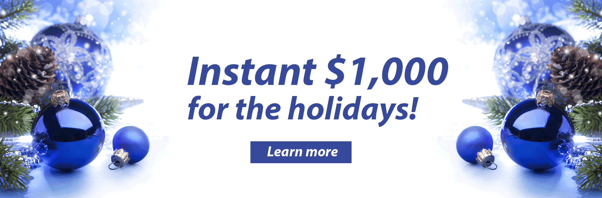 Holiday Loans. Instant $1,000 for the Holidays.
